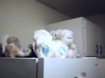 Angel bear pile